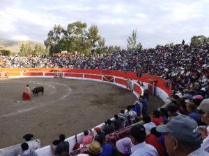 Tres tardes de toros constituyen las actividades recreativas más importantes