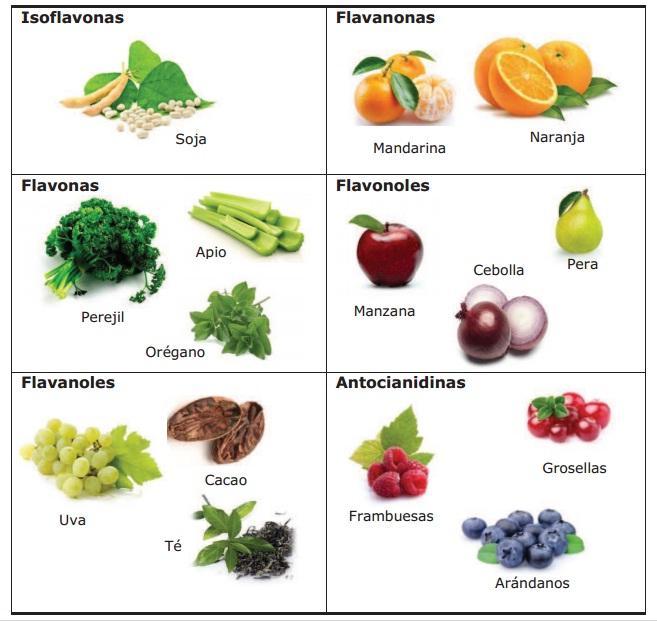 Flavonoides nuestra alimentaci n puede definir nuestra salud psicol gica diego fern ndez castillo - Que alimentos son antioxidantes naturales ...