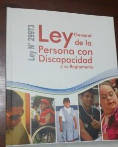 LEY 29973 L