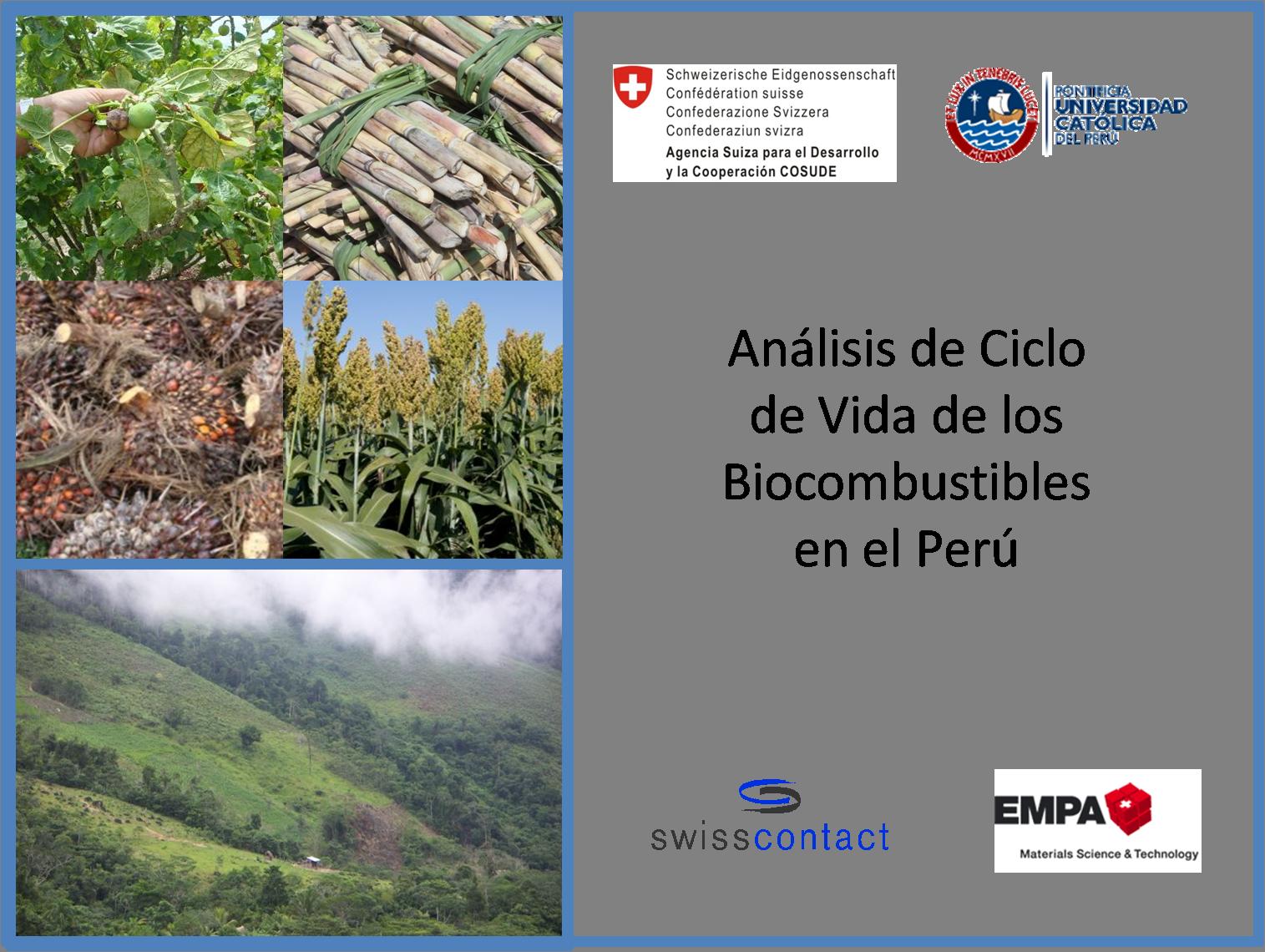 Análisis de ciclo de vida de los biocombustibles en Perú
