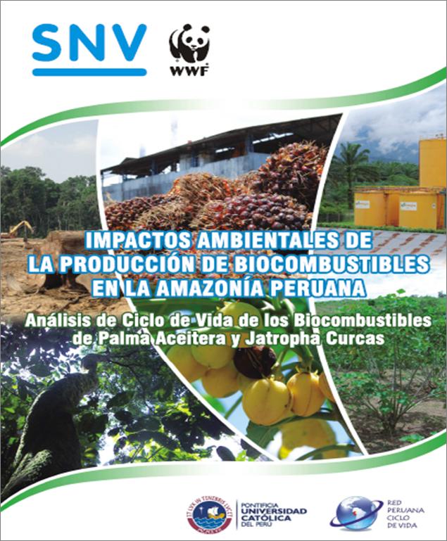 Impactos ambientales de los biocombustibles en la amazoñía peruana