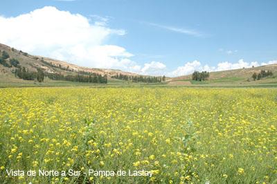 Pampa de Lastay