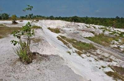 Área deforestada e irrecuperable en la amazonia peruana.