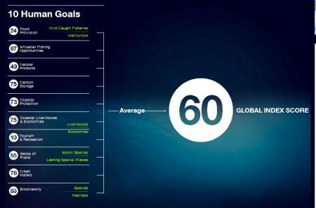 20120830-human_goals.png
