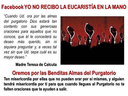benditas almas del purgatorio krouillong karla rouillon gallangos no recibas la eucaristia en la mano comunion en la mano oraciones catolicas