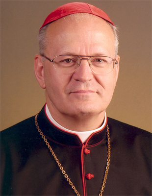 Cardenal Erdo