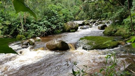 rio_grande.jpg