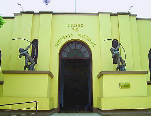 20110329-UNMSM museo historia natural ARCALA.jpg