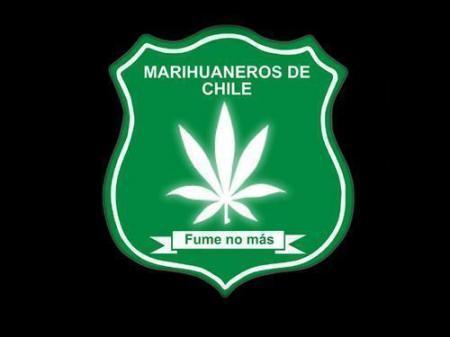 20141101-marihuaneros_de_chile2.jpeg