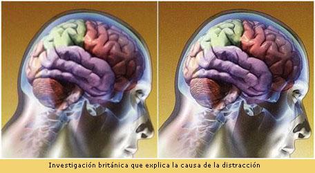 20110516-Cerebro.JPG