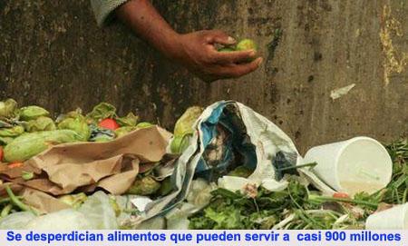 20130927-1_alimentos.jpg