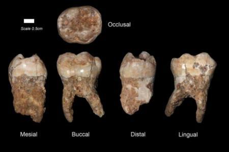 20101231-dientes.jpg