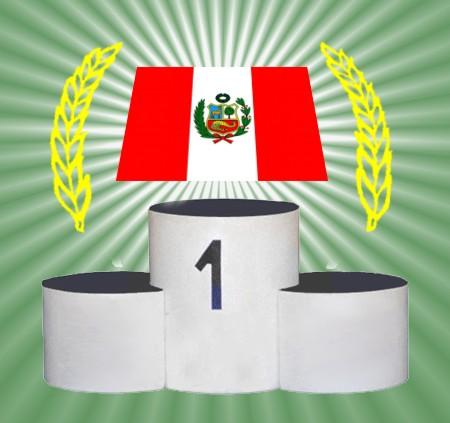 vota por la bandera del peru