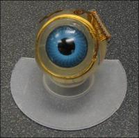 Modelo de ojo con microchip.