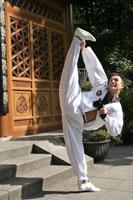 Kung_Fu fuente:http%3A//www.meikoyuenlee.de/meister_yuen_lee.htm