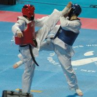 Taekwondo fuente:http://peru.com/deportes/noticias/AutoNoticias/ImagenNoticia69871.jpg