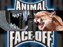 Duelo Animal