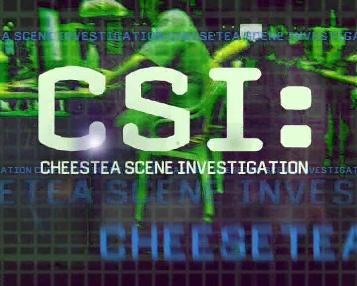 CSI fuente:http://www.cheesetea.com/imagenes/Descargas/CSI.jpg