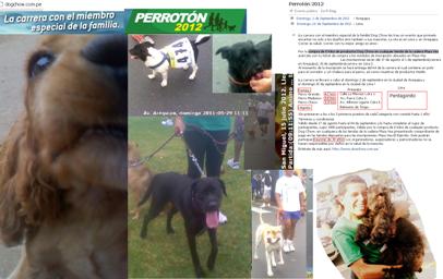 20120824-2012_08_24_carrera_de_mascotas_mini.png