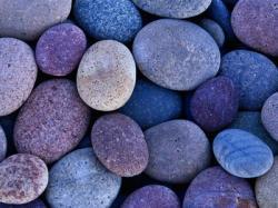 20110406-Piedras.jpg