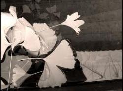 20110601-Anitta.jpg