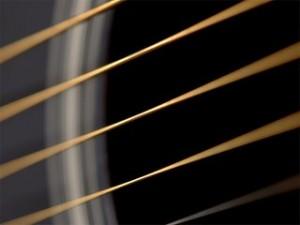 20110712-Cuerdas todas.jpg